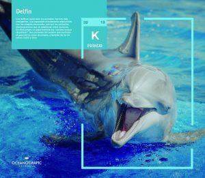Exposición 'Átomos bajo el agua' @ Ampliada hasta el 20 de octubre