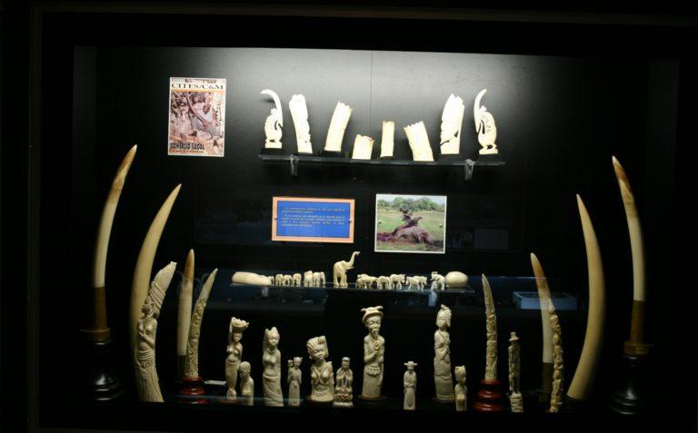 Biodiversidad amenazada. 2002