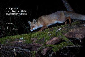 Exposición virtual «Antropoceno. Arte y biodiversidad en espacios periurbanos»