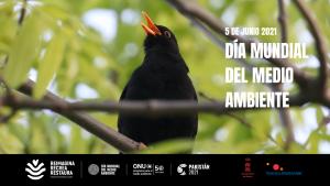 """Talleres: """"Naturaleza urbana"""" (Día Mundial del Medio Ambiente) @ 11:00 y 12:30 h"""