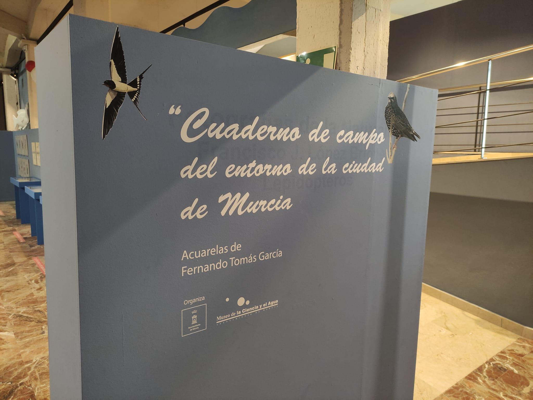 Cuaderno de campo del entorno de la ciudad de Murcia_Fernando (4)